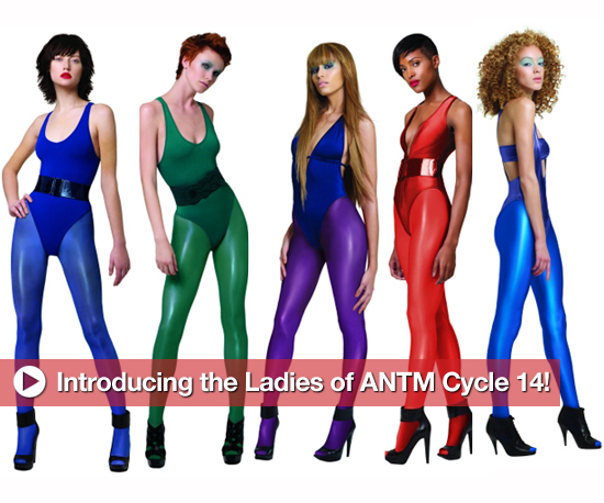 Introducing the Ladies of America's Next Top Model Cycle 14!