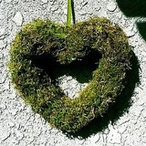The Magic Onions shows you how to turn moss into a Valentine's Day wreath.