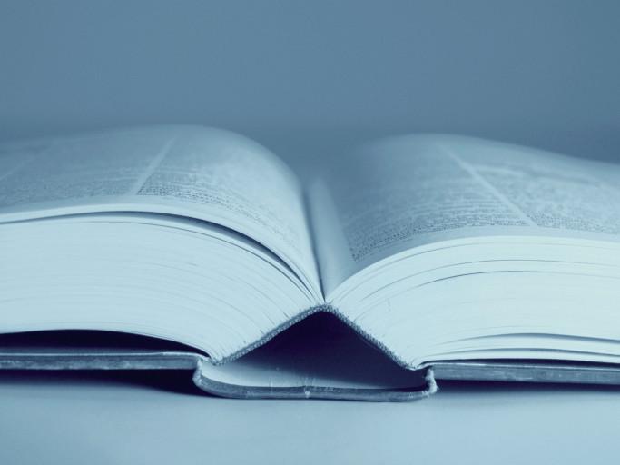 Sin 3: Wordiness