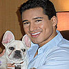 Mario Lopez Gets a New Dog
