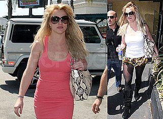 Photos of Britney Spears Shopping by Herself in LA