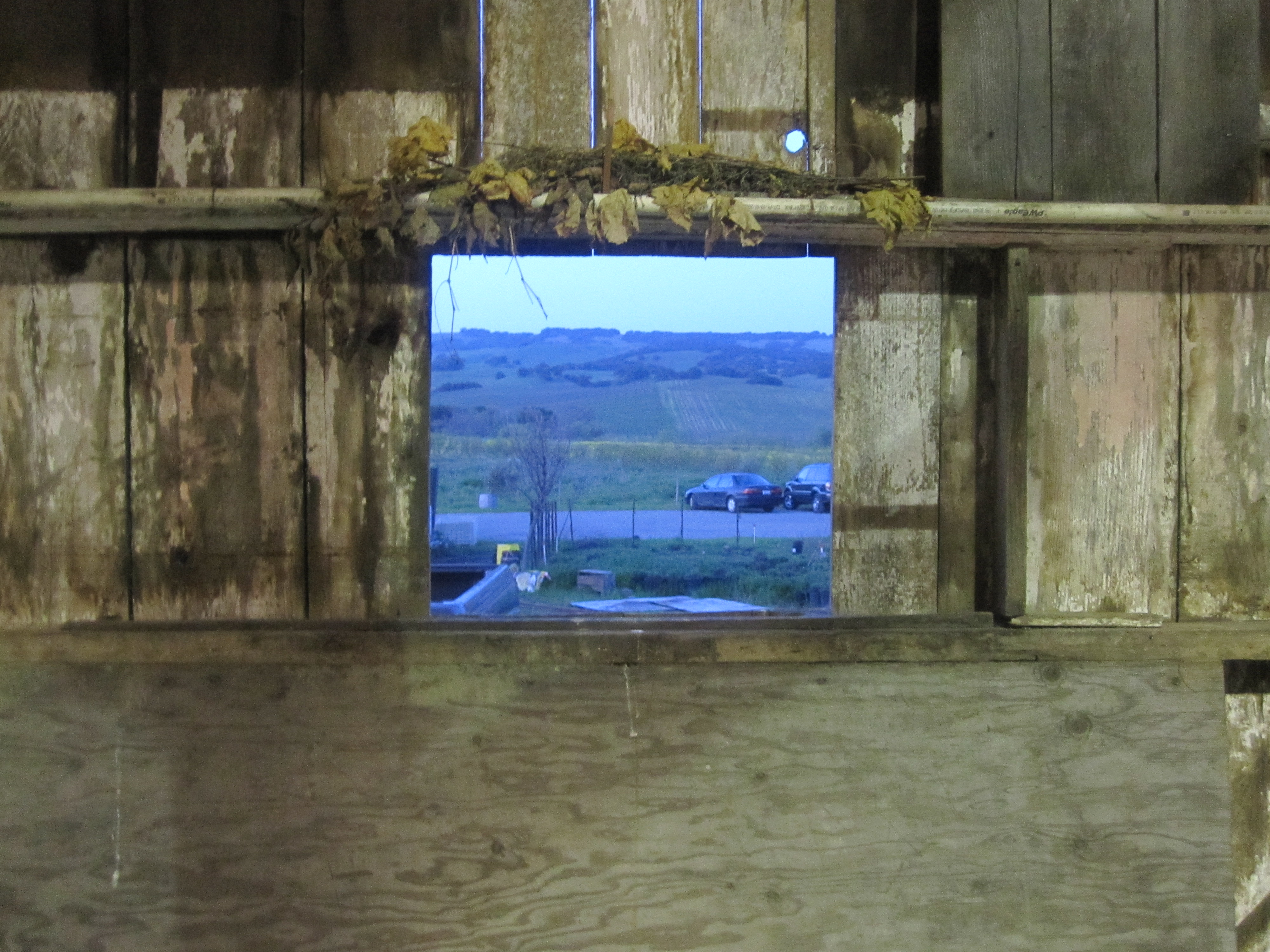 A small window in the barn looked out on the parking lot and fields.