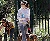 Slide Photo of Jessica Biel Walking Dogs in LA