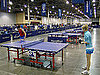 Celebrities Love Ping Pong