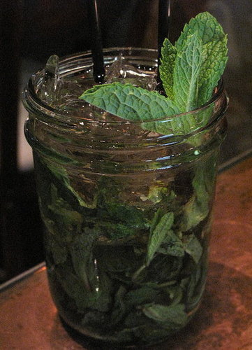 Authentic Southern Mint Julep Recipe