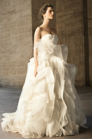 Vera Wang David's Bridal Wedding Dresses