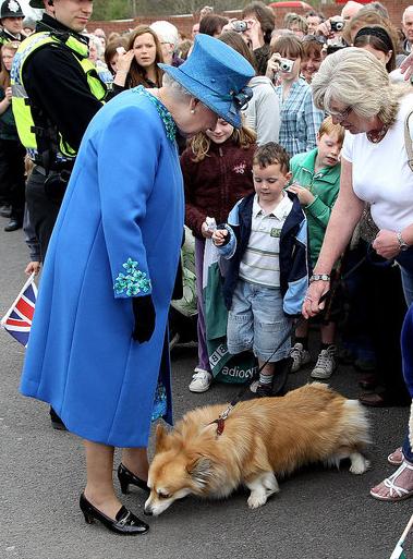 Queen Elizabeth Meets Cutie Corgi