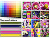 Search Flickr Photos by Color