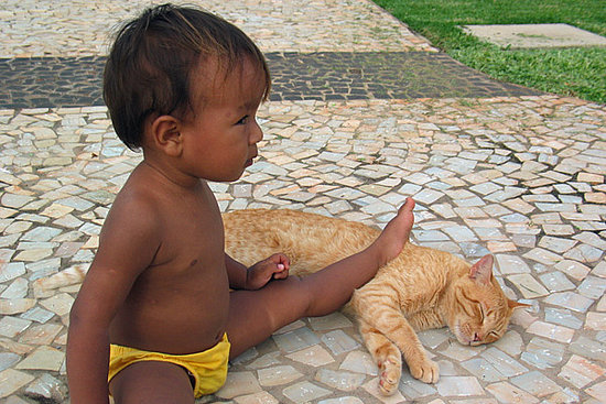 Kiddies and Kitties Team Up to Conquer With Cuteness