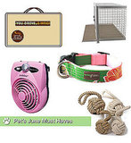 Best Summer Pet Gear