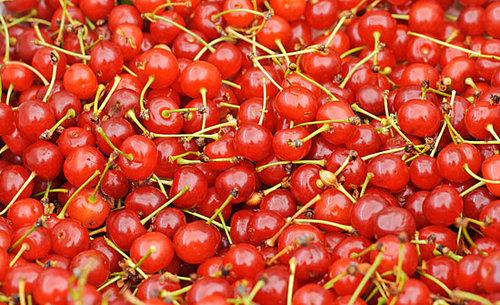 What Is a Sour Cherry?