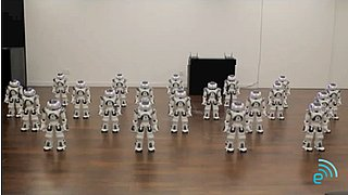 "Nao Robots Dancing to ""Single Ladies"""