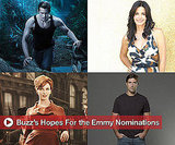 Emmy Nomination Hopes