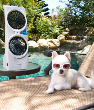 Misting Fan For Dogs