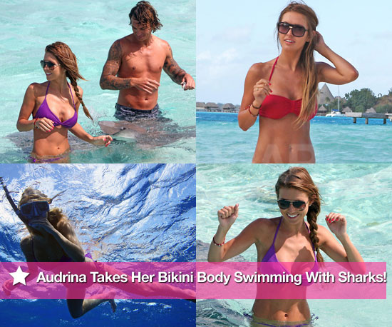 Pics: Audrina Takes Her Bikini Body Swimming With Sharks!