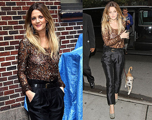 Pictures of Drew Barrymore at David Letterman and With Her Dog