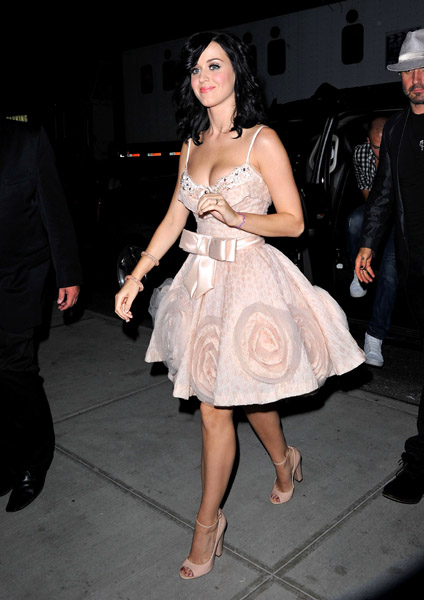 I totally admire Katy Perry's whimsical nature. Her soft pink Zuhair Murad frock had her name written all over it.