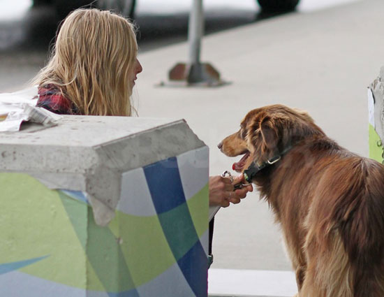 Pictures of Celebrity and Her Dog