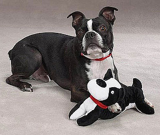 Toys That Look Like Dogs