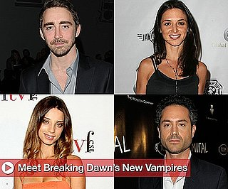 Sugar Shout Out: Get Familiar With Breaking Dawn's New Players