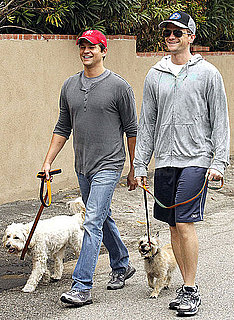 Pictures of Neil Patrick Harris and David Burtka Walking Their Dogs in Studio City, CA