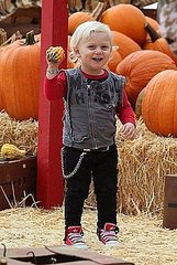 Celebrities flock to Mr Bones Pumpkin Patch