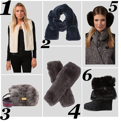Shop the Best Fur Vests, Bags, and Accessories for Winter 2010