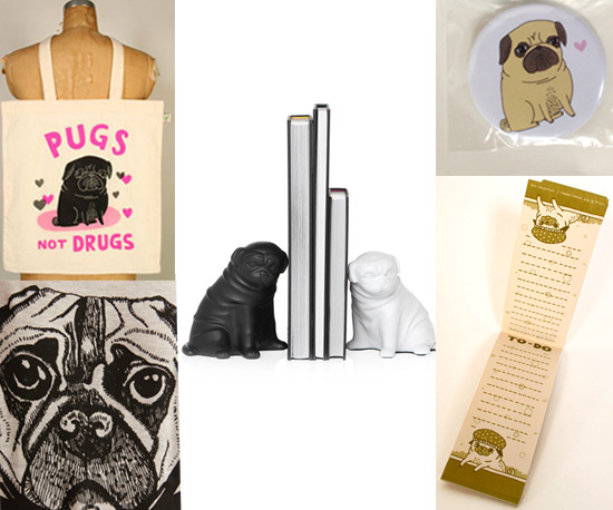Pet Lover Presents: I Can't Get Enough Pugs!