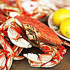 Dungeness Crab Season