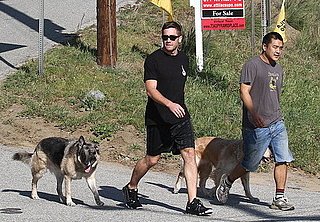Pictures of Jake Gyllenhaal Walking His Dogs in LA