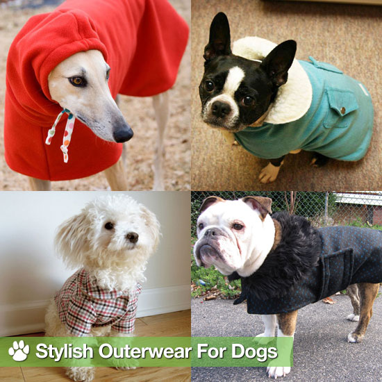 Keep Your Dog Safe and Warm in Stylish Outerwear