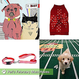 Puppy Bowl, Groundhog Day, Pet Health Awareness, and Other Pet Must Haves