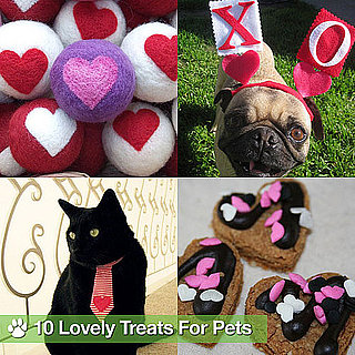 Valentine's Day Treats and Clothing For Pets