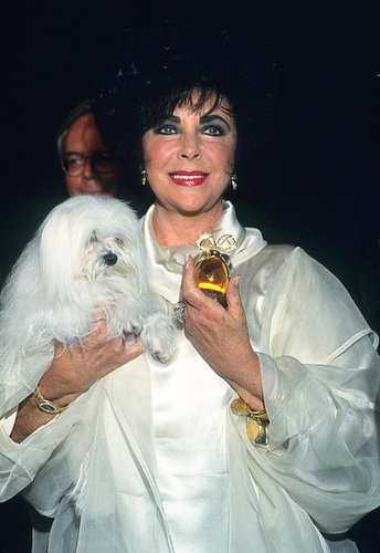 Elizabeth Taylor: Surprising Facts About Her Fragrances 2011-03-23 14:55:57