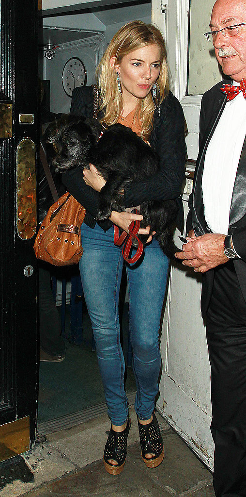 We love the puppy — but really it's Sienna Miller's platforms and earrings that caught our attention.