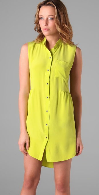 Shipley & Halmos Chinook Shirt Dress ($379)