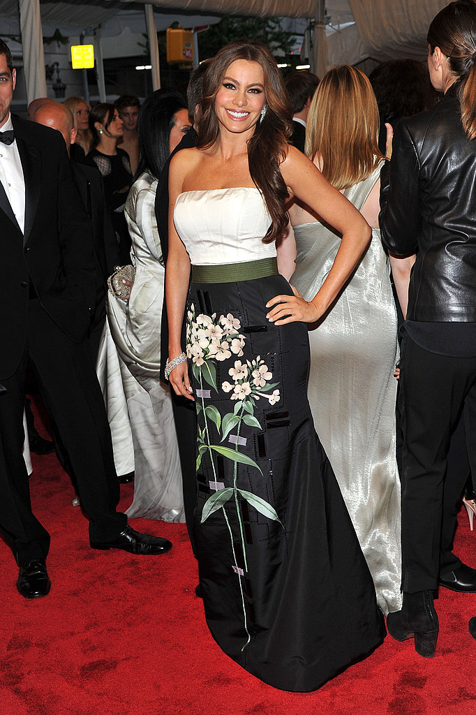 Sofia Vergara in Carolina Herrera