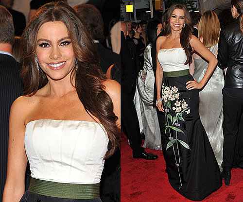 Sofia Vergara in Carolina Herrera at 2011 Met Gala