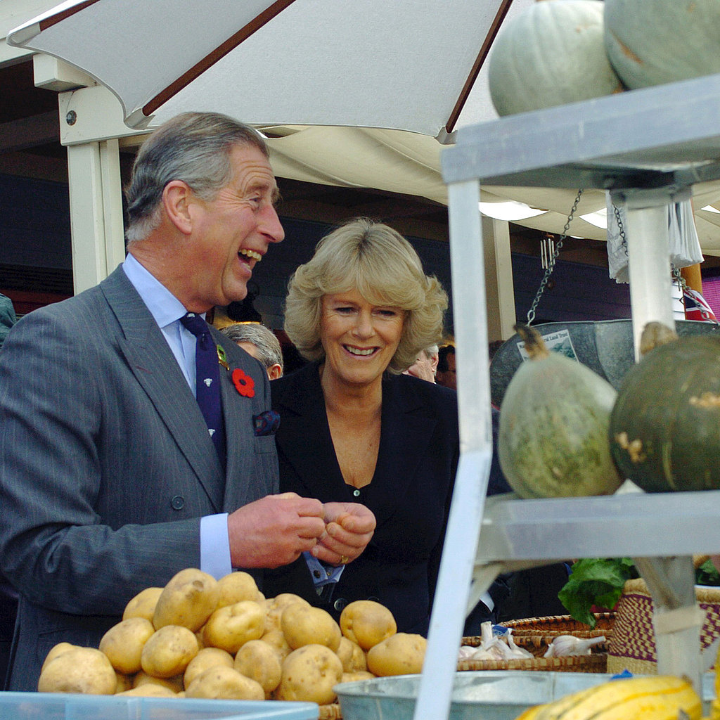 Prince Charles and Camilla, Duchess of Cornwall, 2005