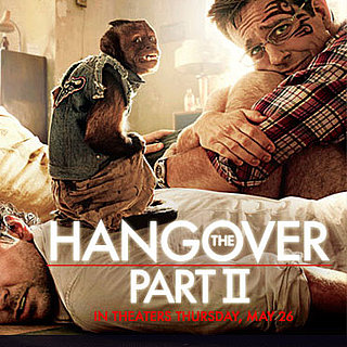 Win a Trip to The Hangover 2 Premiere