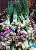 The Spring Food: Spring Onions