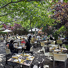 Outdoor Dining in Chicago