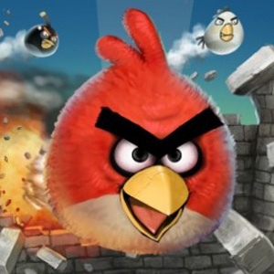 Angry Birds Cookbook