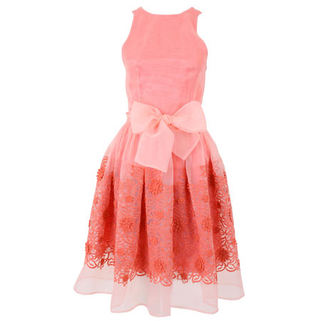 Coral Embroidered Cotton Organza Peggy Dress