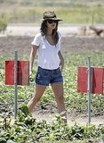 Rachel Bilson wore denim.
