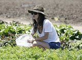 Rachel Bilson got down in the dirt.