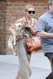 Ashley Olsen carried her dog in NYC.