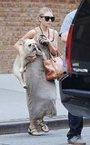 Ashley Olsen carried her French bulldog in NYC.