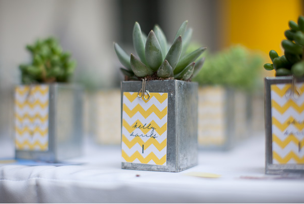 Miniature succulents, displayed in a graphically interesting container, are a perfect way to decorate a wedding reception table. Guests can tote these tiny containers home at the end of the night. Source