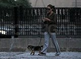 Natalie Portman walks without newborn Aleph Millepied but with dog Whiz.